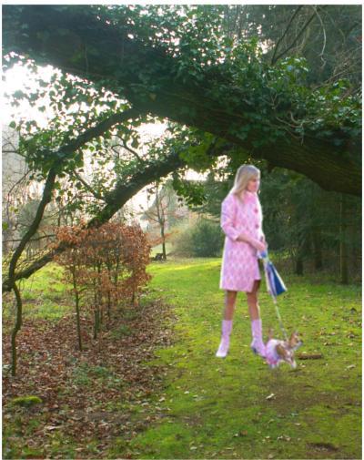 Miss Barbie mit Accessoire